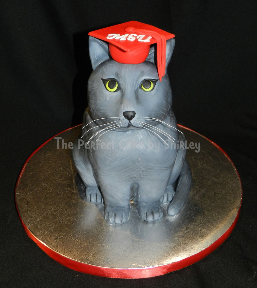 Graduation Cat on Cake Central