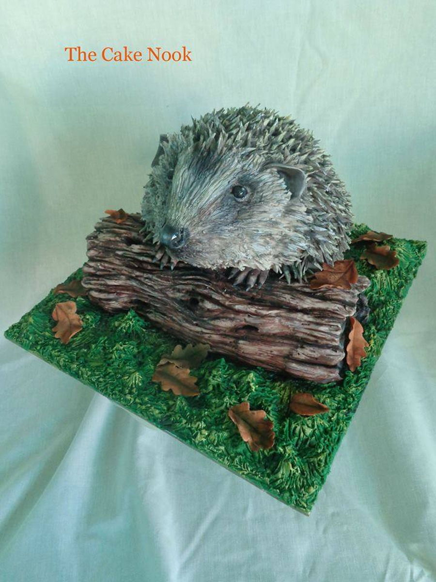 Hedgehog Cake Animal Right Collaboration Cakecentral Com