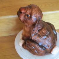 Lovable Bunny My second carved cake. The head is RKTs, held on with 2 skewers for strength, stuck in straws to keep from touching cake. All chocolate...