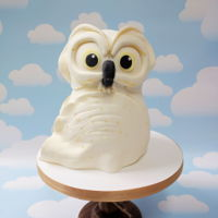 Owl Cake This little sweety is a donation for the local wildlife shelter auction. Lets hope they get some money for him!