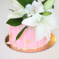 Pink 6 Inch Cake With Vegan White Chocolate Ganache Pink 6 inch cake with vegan white chocolate ganache