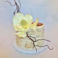"Rustic Romantic Magnolia Cake A ""Rustic Romantic"" Magnolia Birch tree cake for a charity event."