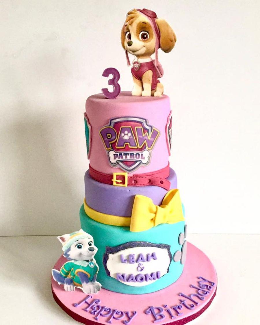 Paw Patrol Everest Birthday Cake