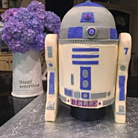 R2D2 In Purple R2D2 in purple. Chocolate cake with RKT arms. Led light on front. Buttercream cake with fondant accents.