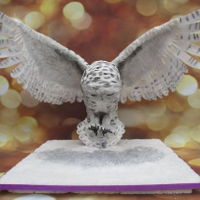 Snowowl Cake I am just a hobby baker, dont make cakes for others. Loving making this works just for fun. This cake is far out my favorite creation I...
