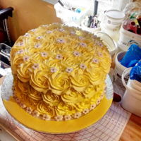 Yellow Rosettes whipped cream rosettes