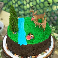 Forest Themed Cake I made this cake for a 7 year old boy. He was having a deer hunting party.