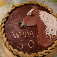 Palomino Horse Cake With/ Lasso Border Double chocolate layer cake with chocolate buttercream frosting.