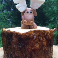 Tree Bark Cake With Moose Topper The cake is a carrot cake with vanilla buttercream frosting covered in homemade vanilla fondant that has been painted. The moose is make...
