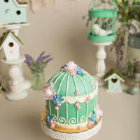 Birdcage One of my smash cakes for my favorite local photographers!