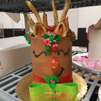 Rudolph The Red Nose Reindeer Double 5inch Rudolph cake.