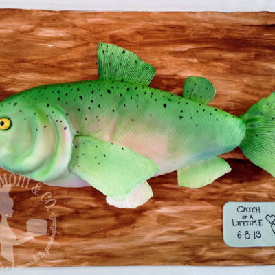 Rainbow Trout Groom's Cake Rainbow trout groom's cake for an avid fisherman. Hand carved cake covered in fondant and airbrushed. Fins and tail are made of...