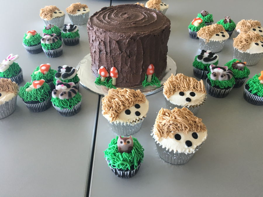 Woodland Creatures Cake And Cupcakes Cakecentral Com