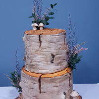 Birch Bark Wedding Cake Recent rustic wedding cake I made