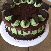 Mint Chocolate Chip Cake This was for my husband's birthday. Every year I make him an Oreo cake. This year after realizing he's been on a mint Oreo and...