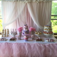 Pink Cowgirl Sweets Table 2 tier cake, cupcakes, mini cupcakes, caramel wrapped pretzels, cakepops, candy strawberries