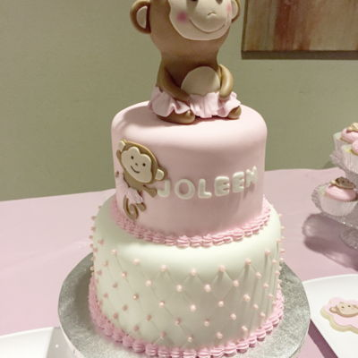 1St Birthday Party ~ Pink Baby Girl Monkey Theme Party