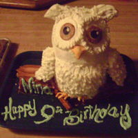 Owl Cake Sculpted owl cake. yellow cake, iced with buttercream icing. Made from 3 6-inch layers.