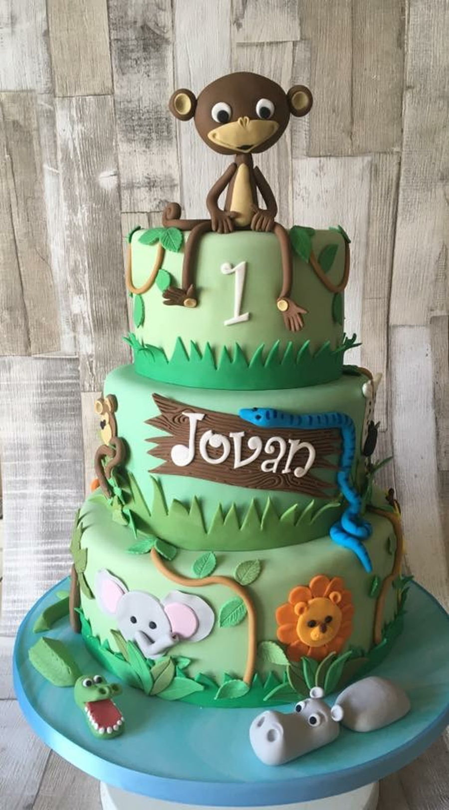 Jungle Theme Cake CakeCentralcom