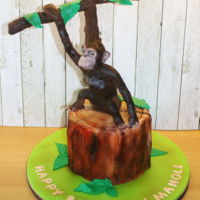 Chimpanzee Cake Chocolate mud cake
