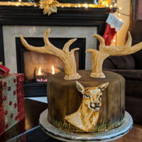 Christmas Reindeer The cake is airbrushed and the reindeer is hand painted.