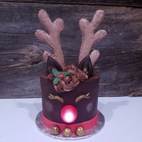 Reindeer Cake Mint chocolate reindeer cake with cookie antlers and glowing red nose. This cake was a hit at a community event