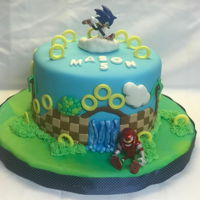 Sonic The Hedgehog My Grandson loves the original Sonic game, so I made this cake for his 5th Birthday. The cake was a Devil's Food cake with a...