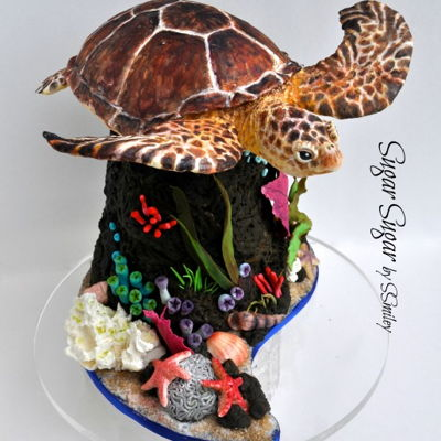 Green Sea Turtle Cake