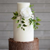 Rustic Elegance A woodlands inspired design featuring a bottom tier with a tree bark effect, a double barrel, ten inch tall second tier and hand made...