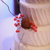 "Winter Romance Swiss Meringue tiered wedding cake. Chocolate fondant pinecones and berries. Branches ""iced"" with sugar crystal"