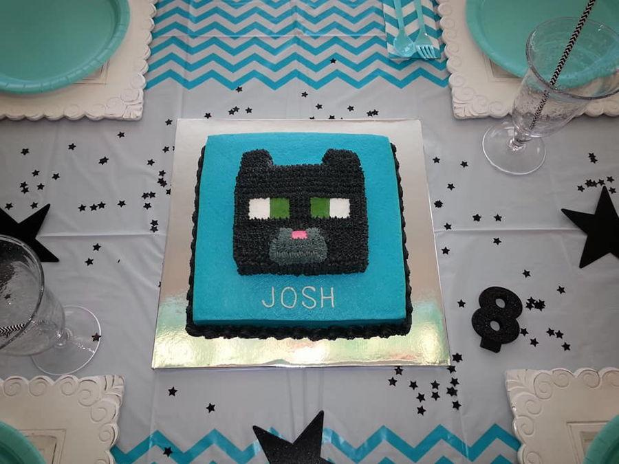 Minecraft Black Cat Birthday Cake Cakecentral