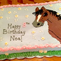 Happy Birthday! Chocolate cake frosted and decorated with buttercream frosting. Made this for a little girl's birthday who loves horses.