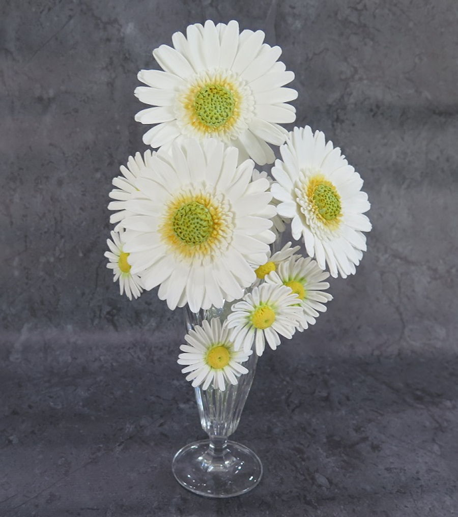 Gerbera Daisies & Shasta Daisies In White. on Cake Central