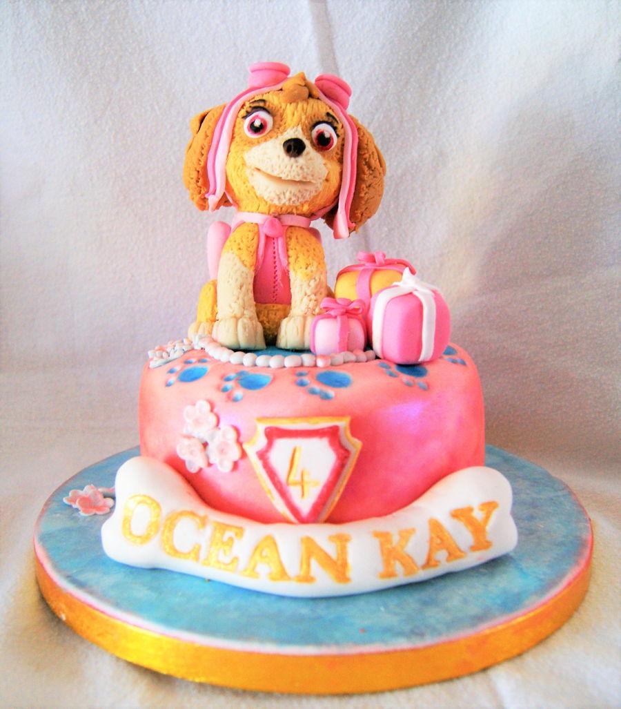 Sky Paw Patrol Mini Cake Cakecentral Com