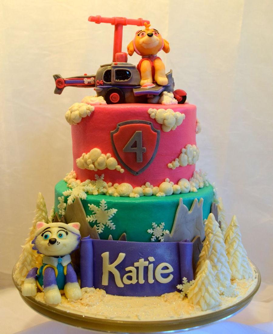 Skye And Everest Paw Patrol Cake Cakecentral Com