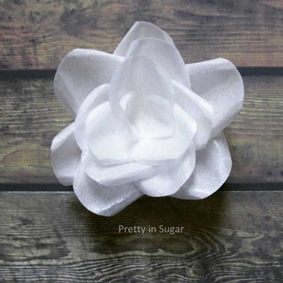Wafer Paper Flower Cakecentral