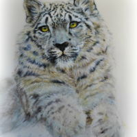 "Snow Leopard Painted on an 8"" x 10"" fondant panel, the snow leopard was my contribution to the Spectacular Pakistan Collaboration. He is..."