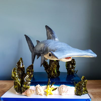 3D Edible Shark Cake