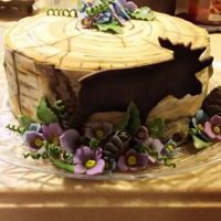 Birch/moose Cake This was an entry for the cake Decorating contest for the 2017 Franklin County Fair. It's all done with fondant and gumpaste.