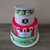 Ninja Turtle Cake I made this for my sons birthday. Top layer chocolate, middle strawberry and bottom vanilla.