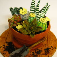 Succulent Flower Pot Cake Grandson grows succulents so this is his birthday cake for this year. Fondant covered flower pot cake, airbrushed. Gumpaste succulents and...