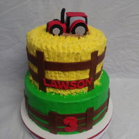Tractor Cake 8inch and 10inch white cake, Butter cream icing.. Used a grass tip for the hay