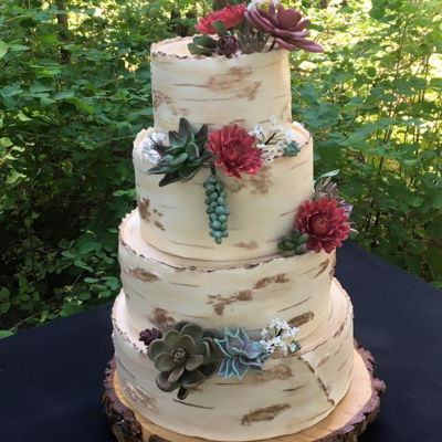 Birch Bark With Succulents