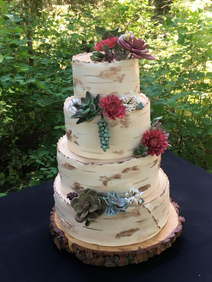 Birch Bark With Succulents on Cake Central