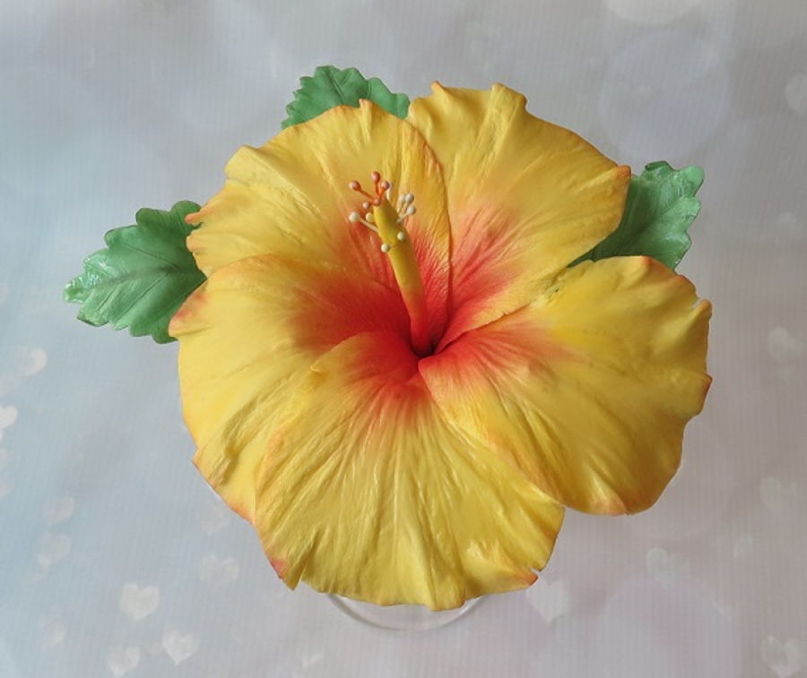 Yellow Hibiscus Flower on Cake Central