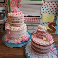 First Birthday Cake And Smash Cake Pink Naked Cake for a sophisticated one year old girl!