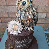 An Owl Cake All choclate, all edible