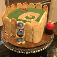 David Write Farewell Cake I made this cake for a party given by my fellow Mets fans . It's lemon with a lemon curd filling. The stadium is made from lemon...