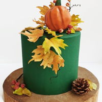 Autumn Cake A 1 tier cake with autumn theme