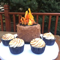 Campfire Theme Campfire cake (fondant w/ Taylor's powder for flames), and s'mores cupcakes - graham cracker crust, chocolate cupcake,...